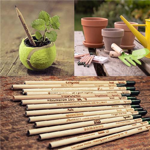 芽が出る鉛筆/スプラウトペンシル